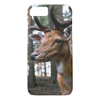 Hirsch - wild iPhone 8/7 hülle
