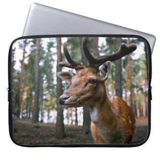 Hirsch - wild laptopschutzhülle