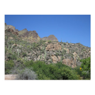 Historische Apache-Spur Postkarte