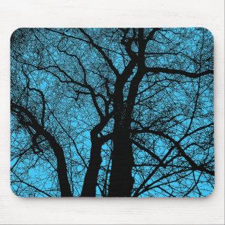 Hochauflösender Baum - Himmel-Blau Mousepads