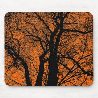 Hochauflösender Baum - Orange Mauspads