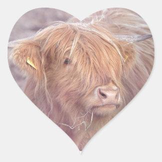 Hochland-Kuh, Hochland-Vieh Herz-Aufkleber