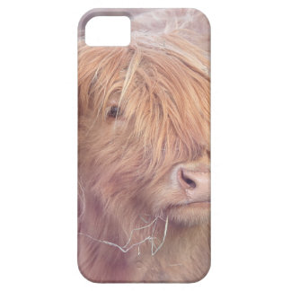 Hochland-Kuh, Hochland-Vieh Schutzhülle Fürs iPhone 5