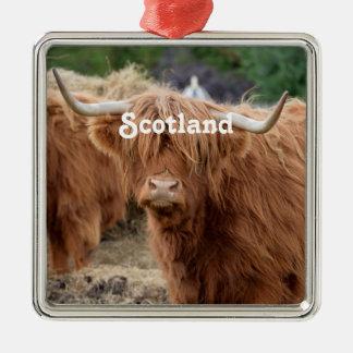 Hochland-Kuh Silbernes Ornament