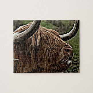 Hochland-Vieh, ländliches Schottland Puzzle