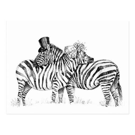 Hochzeit Zebras Postkarten