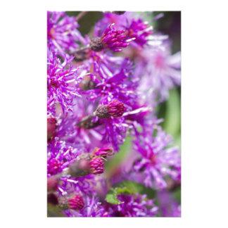 Hohe Ironweed-Wildblumen Briefpapier