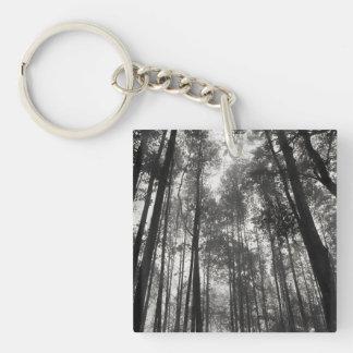 hohen dünnen Bäumen in Schwarzem u. im Weiß oben Schlüsselanhänger