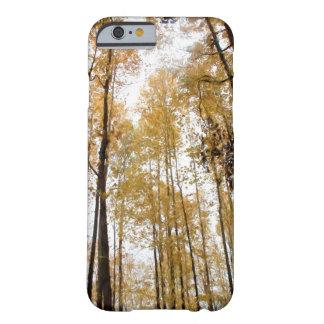 hohen dünnen Bäumen während des Falles oben Barely There iPhone 6 Hülle