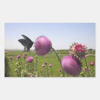 Hoher Gras-Grasland-Schmetterling auf violetter Rechteckiger Aufkleber