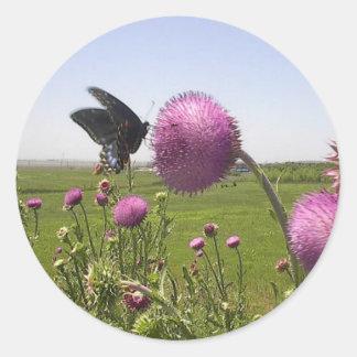 Hoher Gras-Grasland-Schmetterling auf violetter Runder Aufkleber
