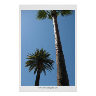 Hoher Kalifornien-Palme-Plakat-Druck Poster