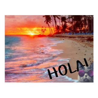hola Miezekatzepostkarte Postkarte