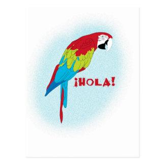hola Papagei Postkarte