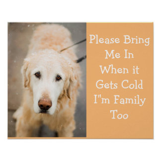 Holen Sie mich bitte herein, wenn es kaltes Poster