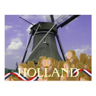 Holland-Windmühlen-orange Tulpe-Postkarte Postkarte
