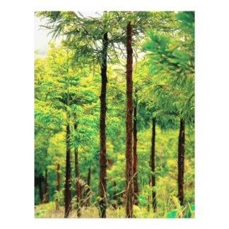 Holz der japanischen Zeder Flyer