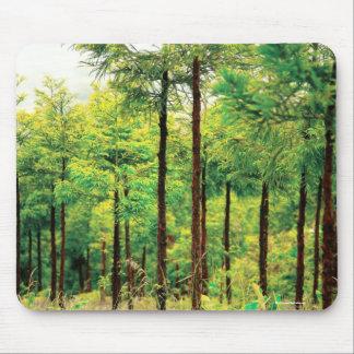 Holz der japanischen Zeder Mousepad