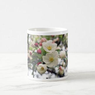 Holzapfel-Blüten Tasse