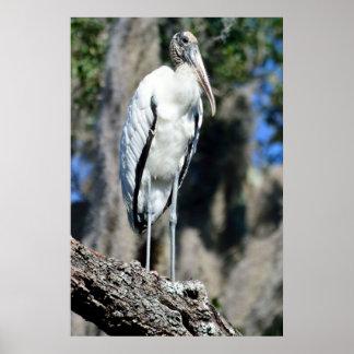 Hölzerner Storch im wilden Poster