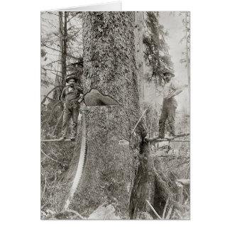 Holzfäller mit riesiger Tanne, 1905 Karte