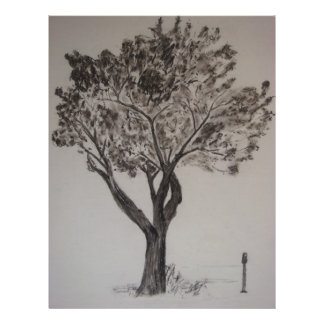 Holzkohlen-Zeichnen eines Straßen-Baums 21,6 X 27,9 Cm Flyer
