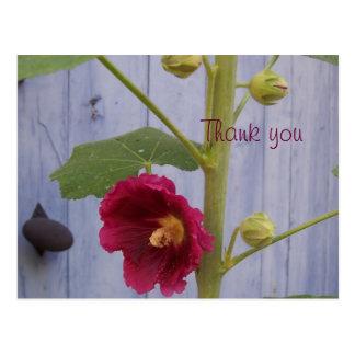 Honeysuccle danken Ihnen Postkarte