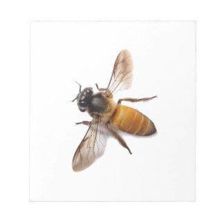 Honig-Biene Notizblock