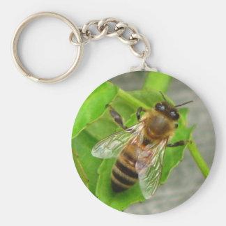 Honig-Biene Standard Runder Schlüsselanhänger