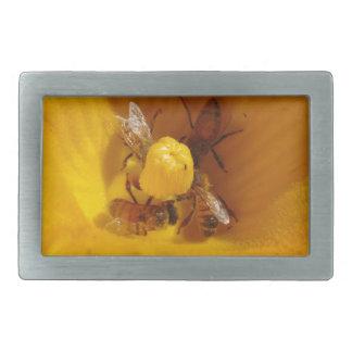 Honig-Bienen-Stau Rechteckige Gürtelschnallen