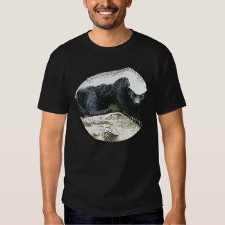 Honig-Dachs auf einem hölzernen Stumpf-T - Shirt