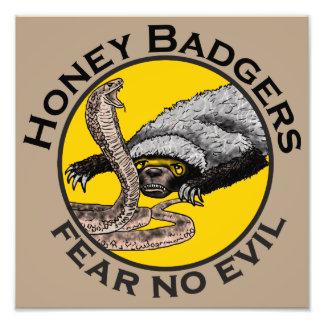Honig-Dachse 'befürchten kein evil Fotografie