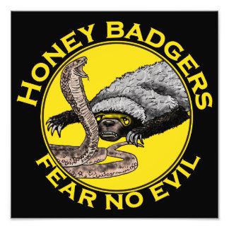 Honig-Dachse 'befürchten kein evil Fotografische Drucke