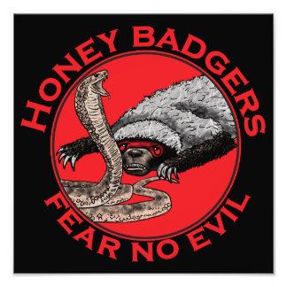 Honig-Dachse 'befürchten kein evil Photographischer Druck