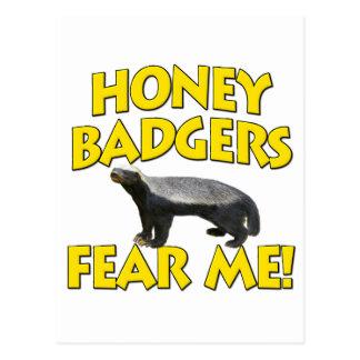 Honig-Dachse befürchten mich! Postkarte