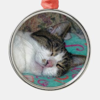 Honig-Schlafen Rundes Silberfarbenes Ornament