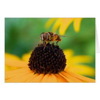 Honigbiene in der Mitte der Aufmerksamkeit Grußkarte