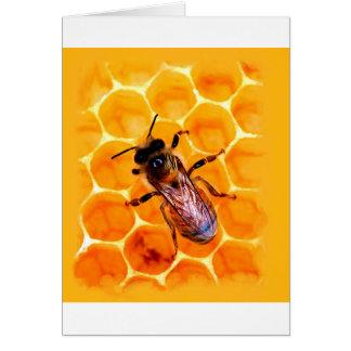 Honigbiene Karte