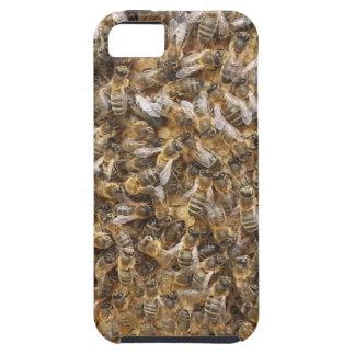 Honigbienen und mehr Honigbienen iPhone 5 Schutzhüllen