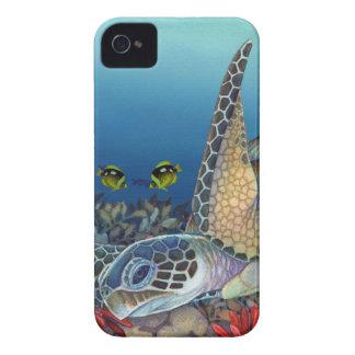 Honu (grüne Meeresschildkröte) iPhone 4 Case-Mate Hüllen