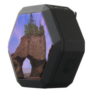 Hopewell Felsen Schwarze Bluetooth Lautsprecher
