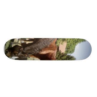 Horeses Essen Skateboard Bretter