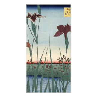 Horikiri Iris-Garten Karte
