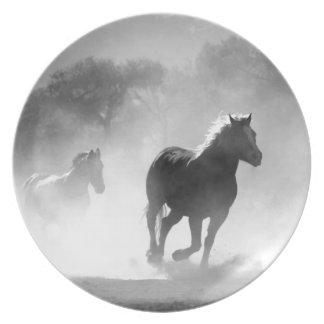 horse-430441 teller