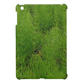 Horsetail-Farne iPad Mini Hülle