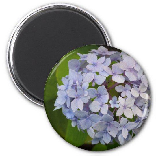 Hortensie Runder Magnet 5,7 Cm