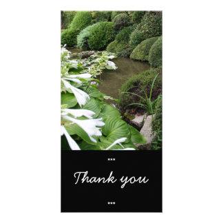 Hosta in einem Zen-Garten danken Ihnen Foto-Karte Karte