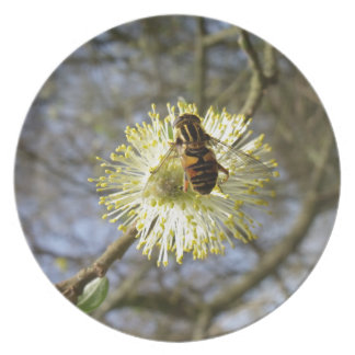Hoverfly auf Weide-Blüte Melaminteller