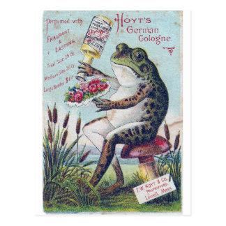 Hoyts Deutsch-Köln-Frosch Postkarte
