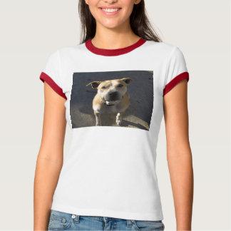 HPIM0889, helfen einem Pitbull-Neutrum Michael T-Shirt